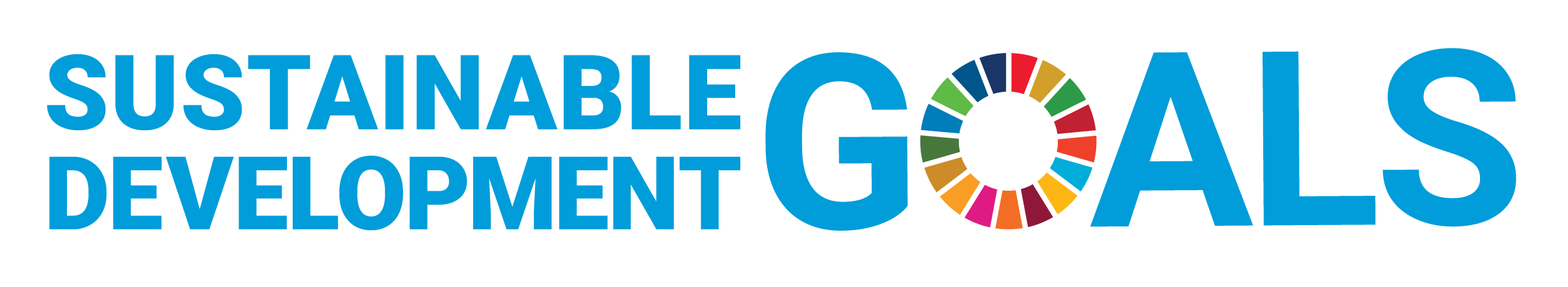 The SDG logo