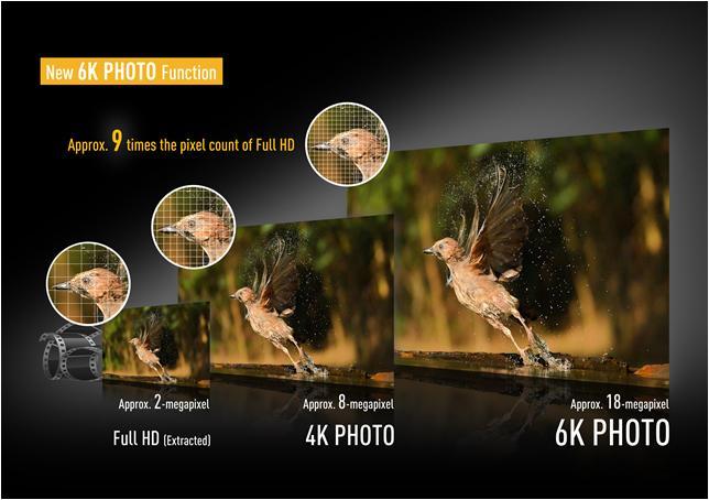 Panasonic gh5 release date