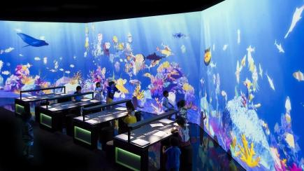 Aquarium_ASM_resized.jpg