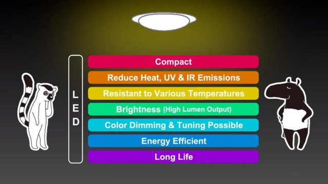 Light Up Your Life - Symphony Lighting / Lighting Knowledge - What's LED