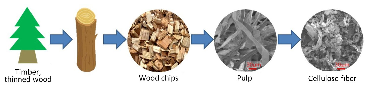 Cellulose Fiber created by extracting fiber from wood