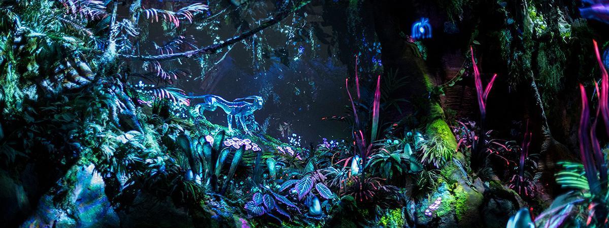 image: Disney Parks - Panasonic