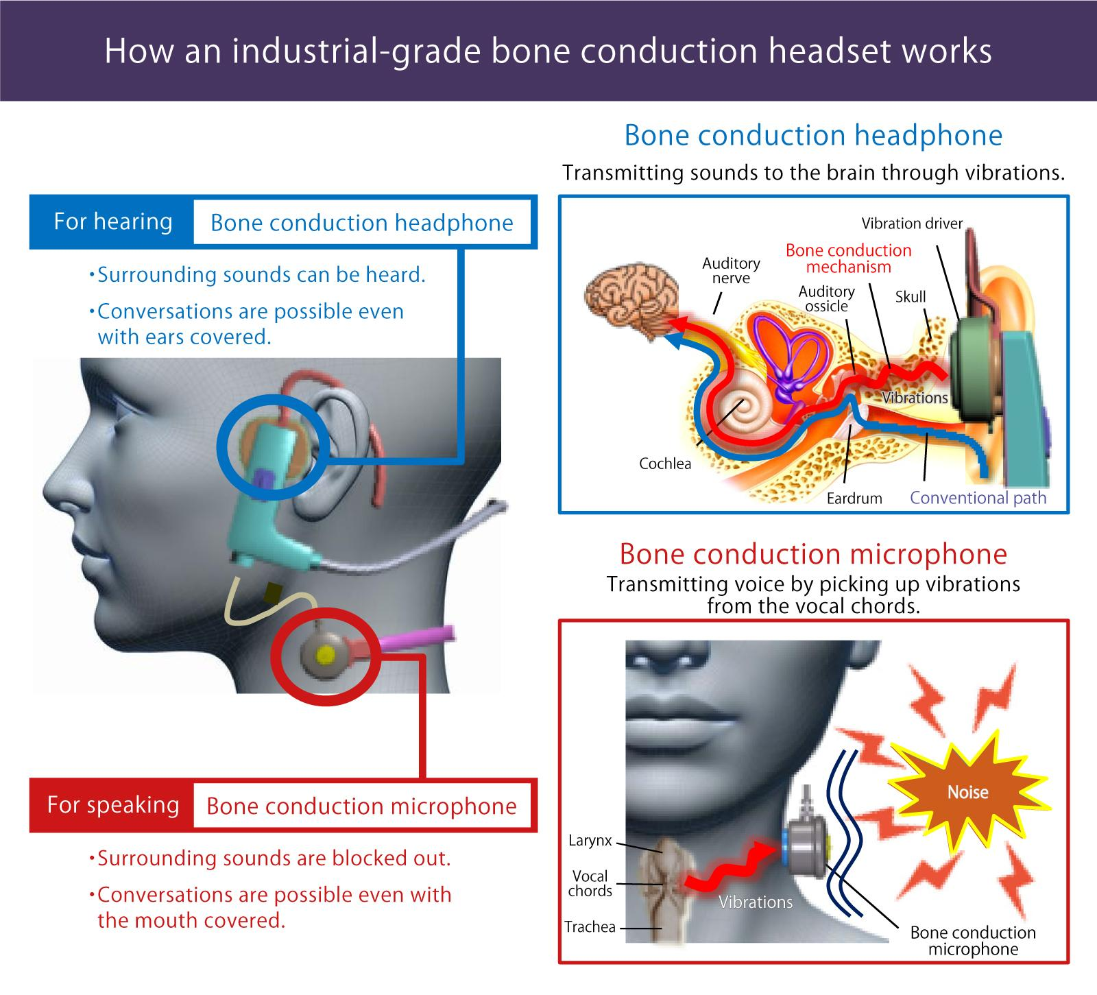 image: Because vibrations transmit sounds to the brain through the bones instead of the eardrum, this technology enables clear communications in loud workplaces without covering one's ears.