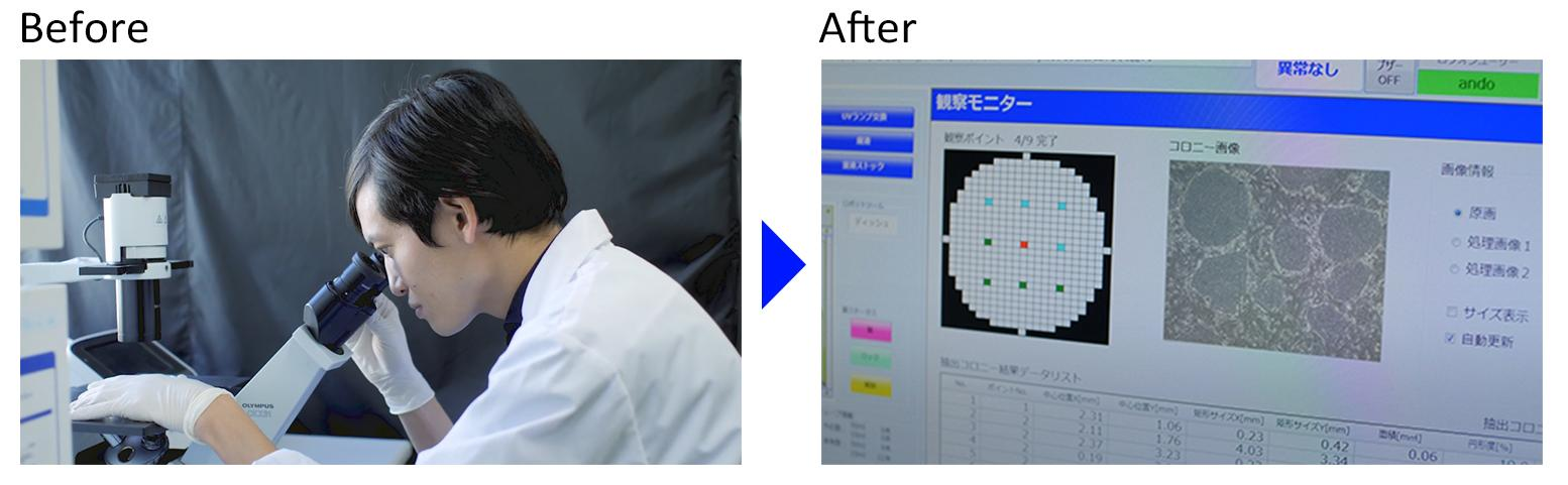 photo: automated cell culture system for iPS cells using image processing and analysis