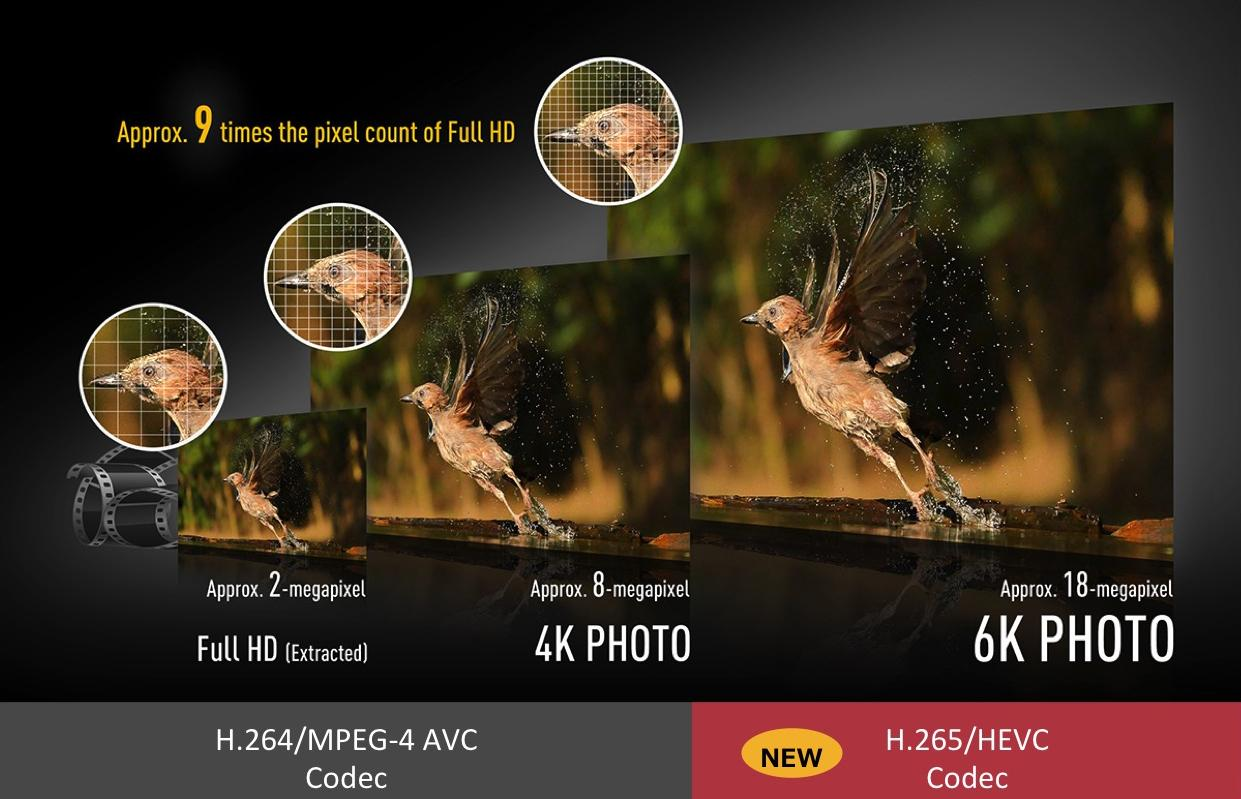 image: comparison bet 4K&6K