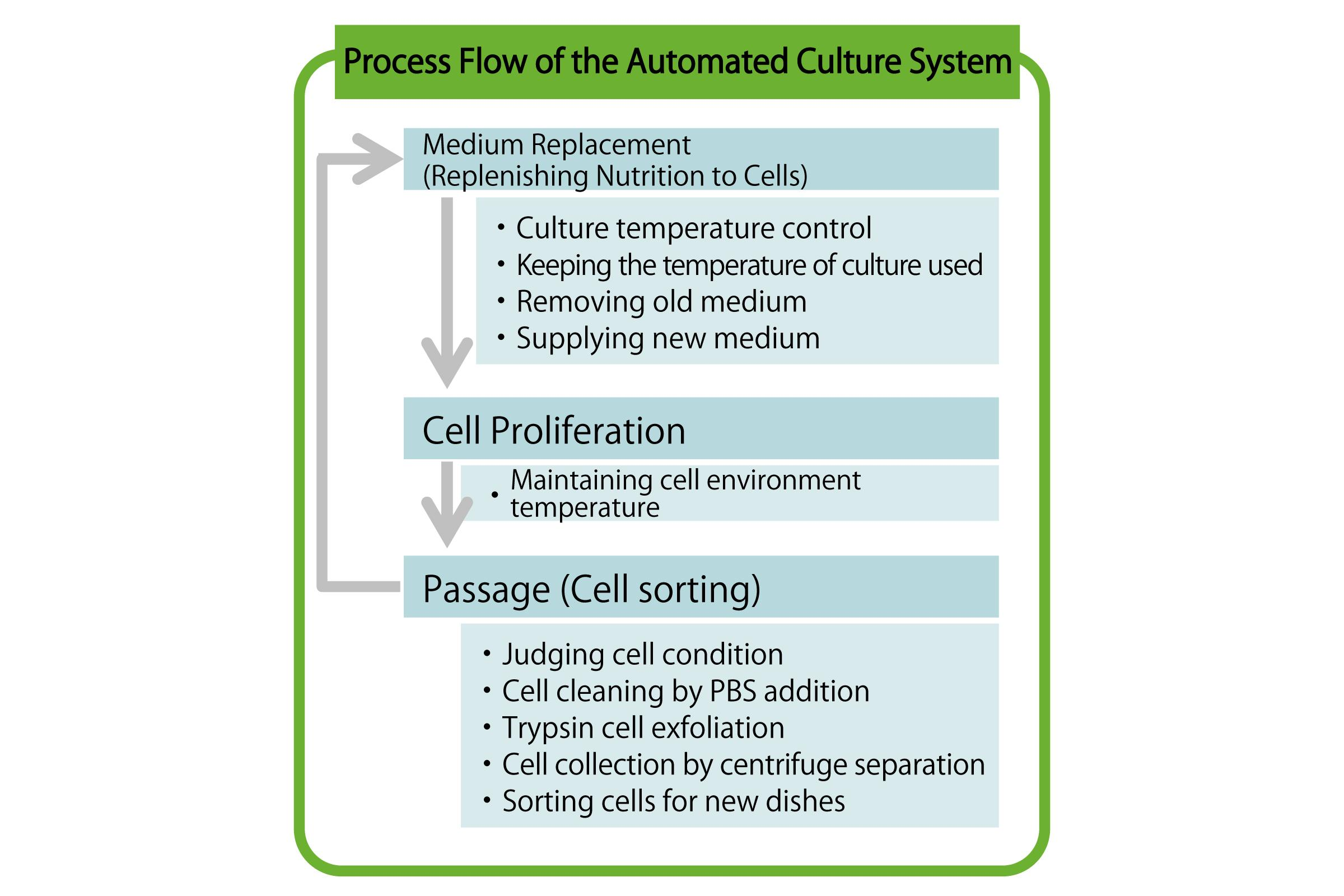 figure: Process Flow of the Automated Culture System