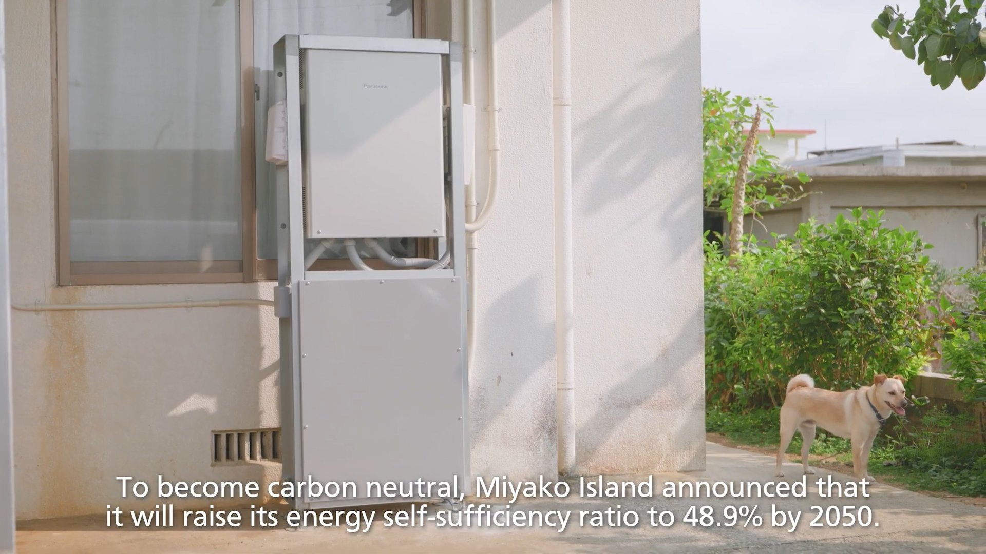A screenshot from the video 'Achieving Carbon Neutrality by 2050'