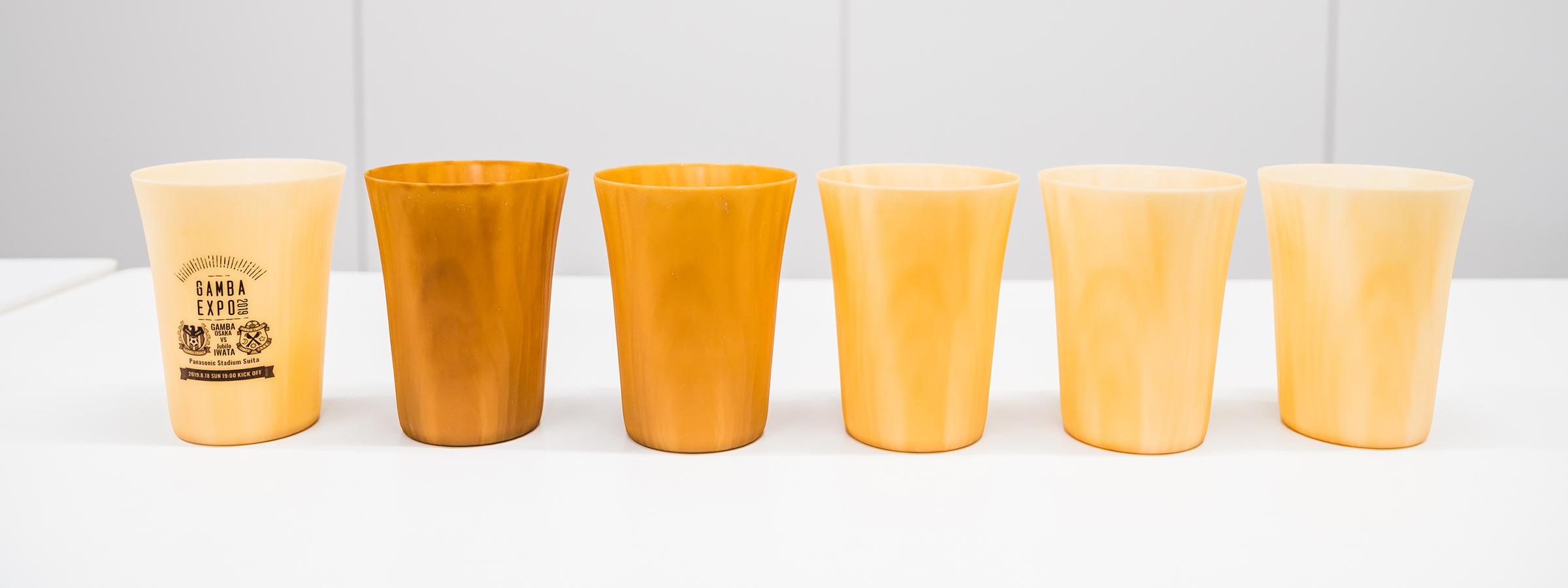 Photo: The lineup of the Forest Tumbler