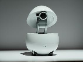 Panasonic Companion Robot (Concept model)