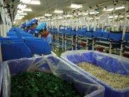 ベトナム配線器具・ブレーカ工場 生産ライン