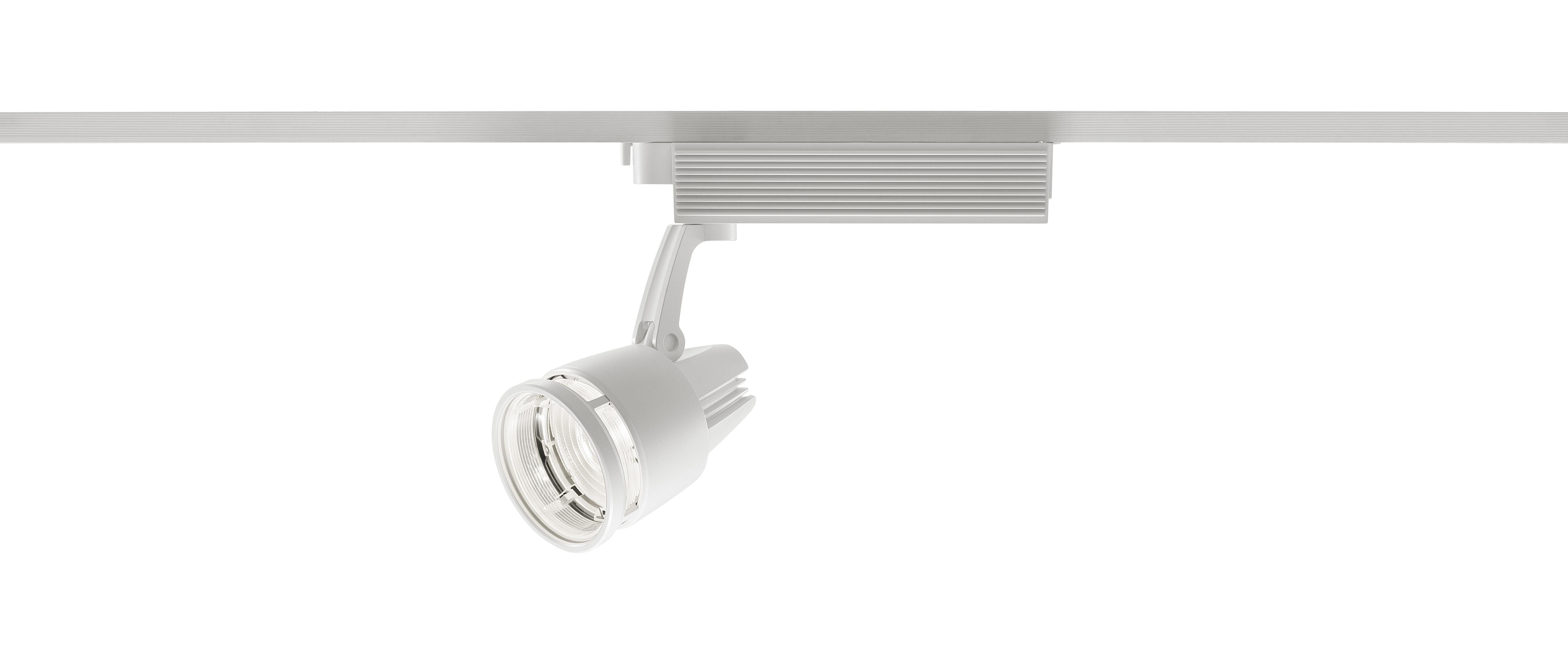 彩光色 LEDスポットライト ワンコア(ひと粒)集光タイプ(透過セードタイプ)