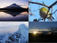 ユーザーの皆さまの素敵な写真が豊富!拍手してみませんか?