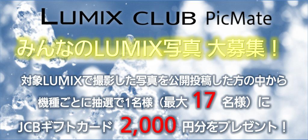 ギフトカード2,000円分が当たる!LUMIX CLUB PicMate みんなのLUMIX写真募集