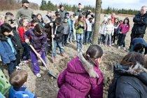 パナソニックの植樹活動事例:デンマークにて