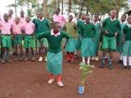 パナソニックの植樹活動事例:ケニアにて