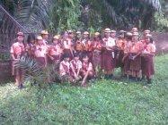 パナソニックの植樹活動事例:インドネシアにて