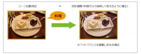 アプリケーション例(1)