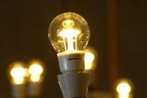 プラハ城 LED電球納入