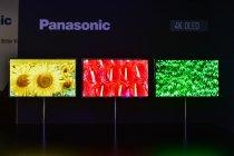 パナソニックの4K 有機ELディスプレイ(OLED) IFA2013