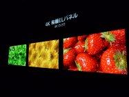 日本初公開の4K有機ELディスプレイ(OLED)*参考出品
