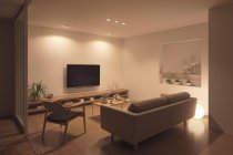 【くらしの色、もっと美しく。】パナソニックの住宅用LED照明器具「美ルック」(リビング・使用事例)