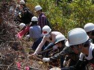 「ながきの森」でのパナソニック従業員とその家族による植樹の様子