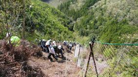 「ながきの森」の多くは急斜面。地元の森林組合の方々による獣害対策の柵が施されている