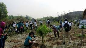 ベトナム:ニンビン省の国立野生動物公園での植樹の様子