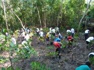 シンガポール:パシールリス公園での植樹の様子