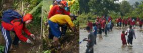 フィリピン:タネイ川沿岸での植樹の様子