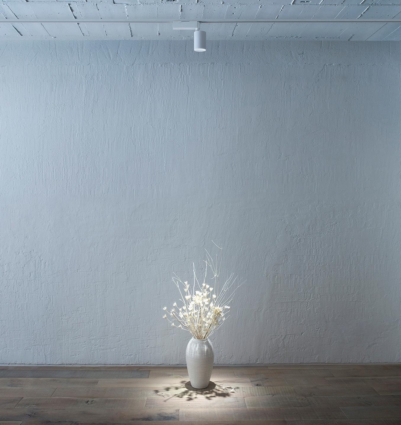 高品質な光を実現する店舗演出用LED照明器具「TOLSO(トルソー)」照射イメージ