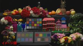 色の再現性の評価画像