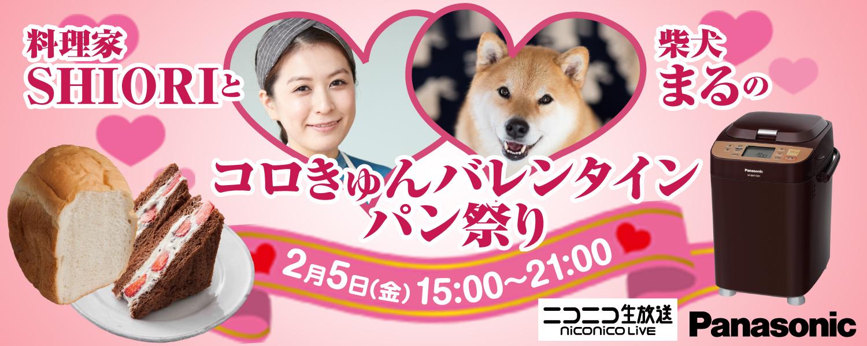 ニコニコ生放送「料理家SHIORIと柴犬まるのコロきゅんバレンタインパン祭り」