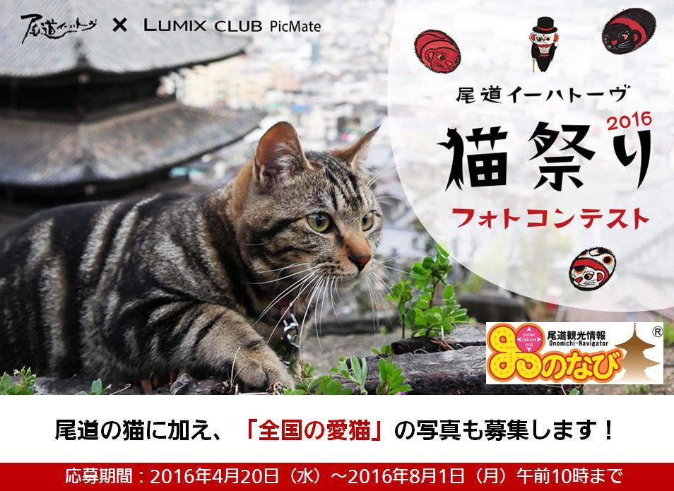 尾道イーハトーヴ×LUMIX CLUB PicMate 「尾道イーハトーヴ猫祭りフォトコンテスト」