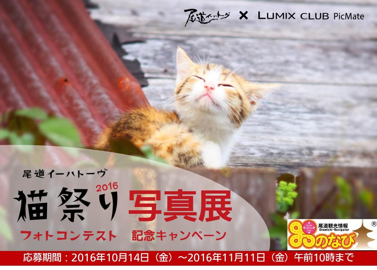 パナソニックが「尾道イーハトーヴ 猫祭り2016 フォトコンテスト写真展」を開催