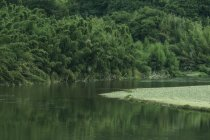 「こどもの笑顔あふれ、自然と歴史ロマンを感じるまち 京都・木津川市写真展」を開催