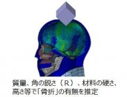 品質評価技術開発の例:危害の程度を定量的に見積もる評価技術開発(頭部骨折有無の判定シミュレーション)