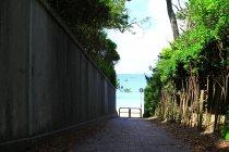 葉山町 写真2 「海に続く小道」