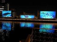 水辺空間の演出 実証実験の様子(東京・天王洲運河)(3)