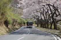 春日奥山ドライブウェイ