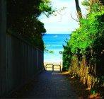 葉山一色海岸(2)
