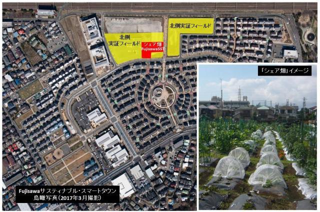 「Fujisawa SST」北側実証フィールドに市民農園「シェア畑 Fujisawa SST」を開設