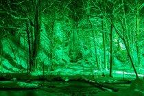 LEDカラー投光器「ダイナペインター」による青森県十和田市「奥入瀬渓流」ライトアップの様子(1)