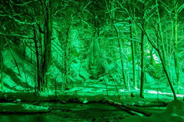 パナソニックが青森県十和田市「奥入瀬渓流」でLEDカラー投光器によるライトアップの実証実験を実施