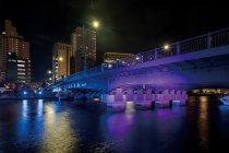 新東海橋(手前:ピンク色、奥:青色)