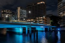 天王洲橋(手前:緑色、奥:青色)