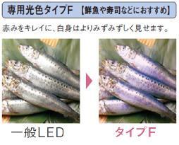 専用光色タイプF【鮮魚や寿司などにおすすめ】