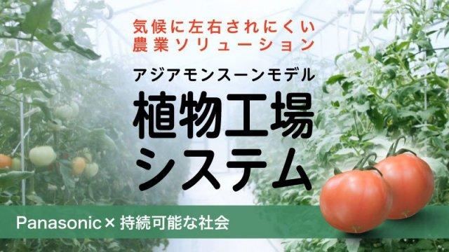 気候に左右されにくい農業ソリューション~アジアモンスーンモデル植物工場システム