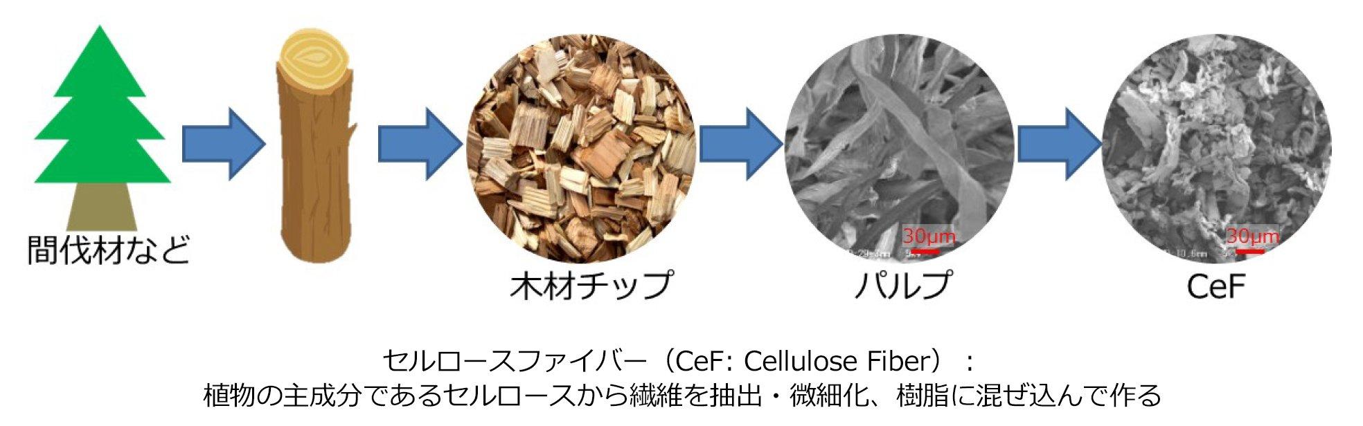 図:セルロースファイバー(CeF:Cellulose Fiber):植物の主成分であるセルロースから繊維を抽出・微細化、樹脂に混ぜ込んで作る