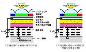 積層型有機薄膜を用いたCMOSイメージセンサーによる近赤外線域撮像を可能とする電子制御技術を開発